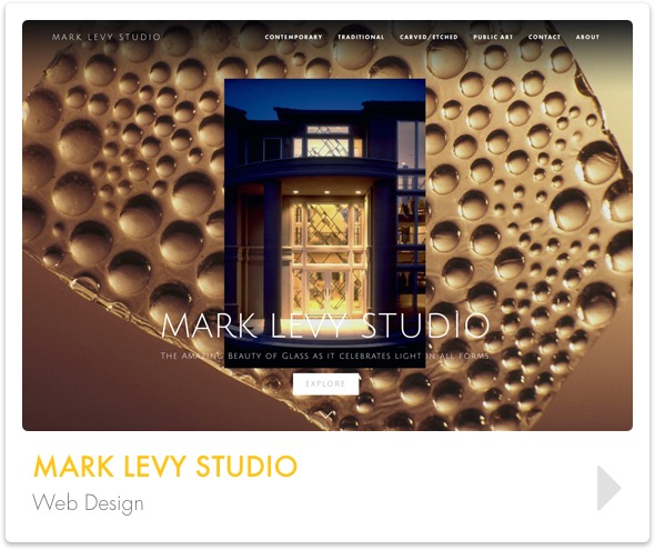 project_banners_mark_levy.jpg