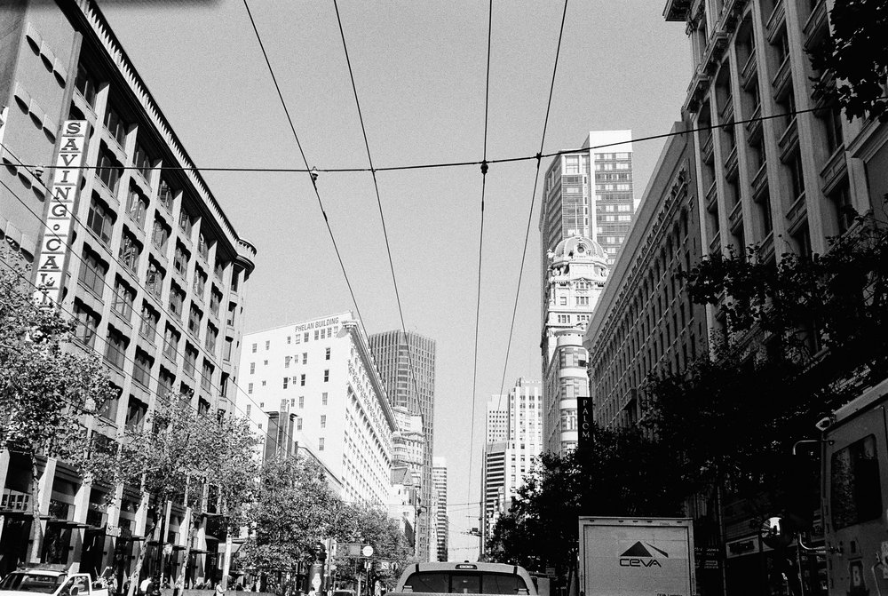 SANFRANCISCO2013_©kristinmyoung_SQUARELORES-7.jpg