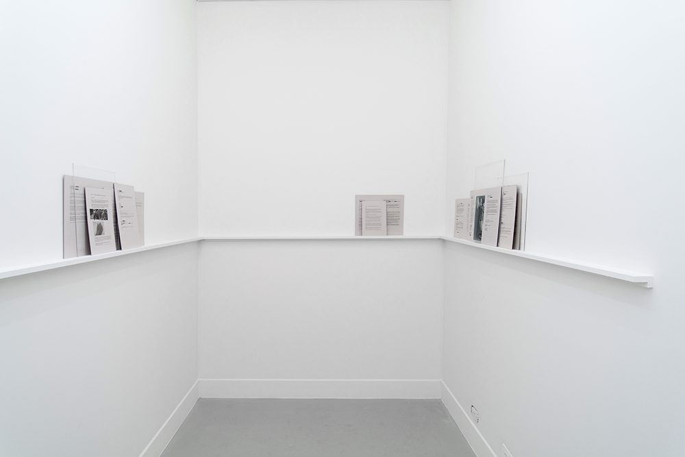 Sanné Mestrom,Leftovers, 2016