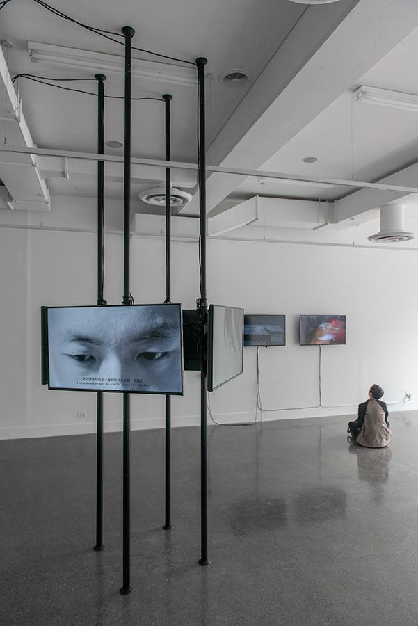 Che Wei Chen,  Yang-Shen-Yuan  , 2016, installation view
