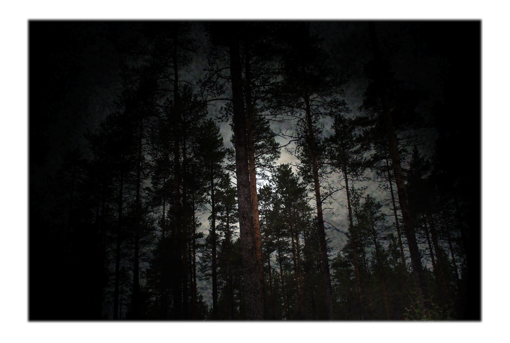 Sophia Szilagyi,Vast Dark II, 2009,digital print,8 x 38 cm  Please note that this edition is sold out and this print is not available for purchase.