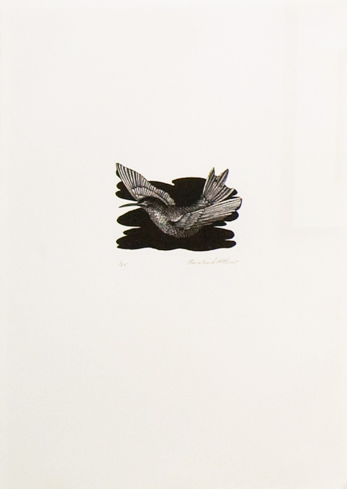 Rosalind Atkins,  Untitled  , Wood Engraving, 11 x 13 cm, 2008