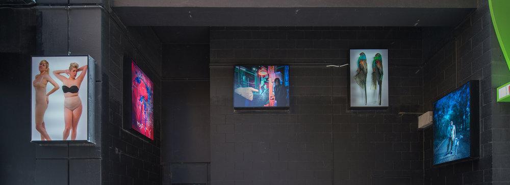 Grad Show, 2016, installation view