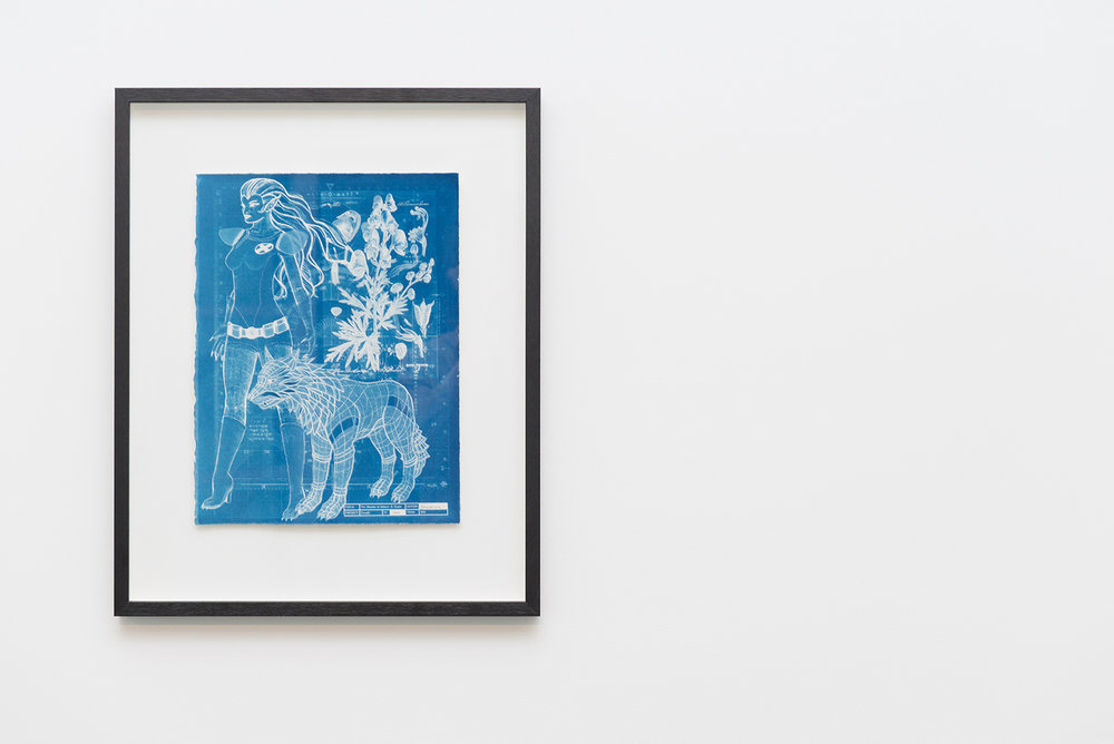 Jazmina Cininas,  The measure of Rahne's X-Factor , 2016, cyanotype, 38 x 28 cm