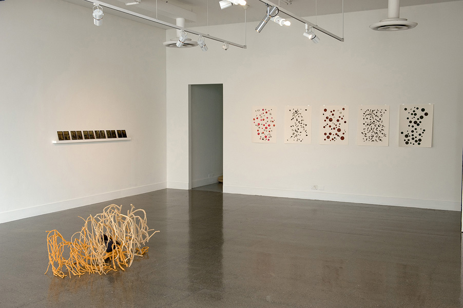 Regeneration Installation View