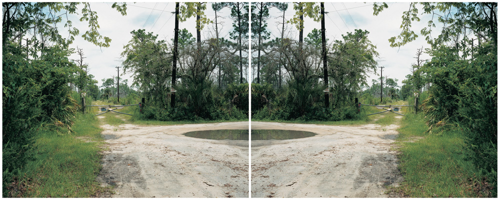 Ann Shelton,  Trespass, (after Monster) Daytona Beach,  Florida, USA, 2001, Diptych, C Type prints
