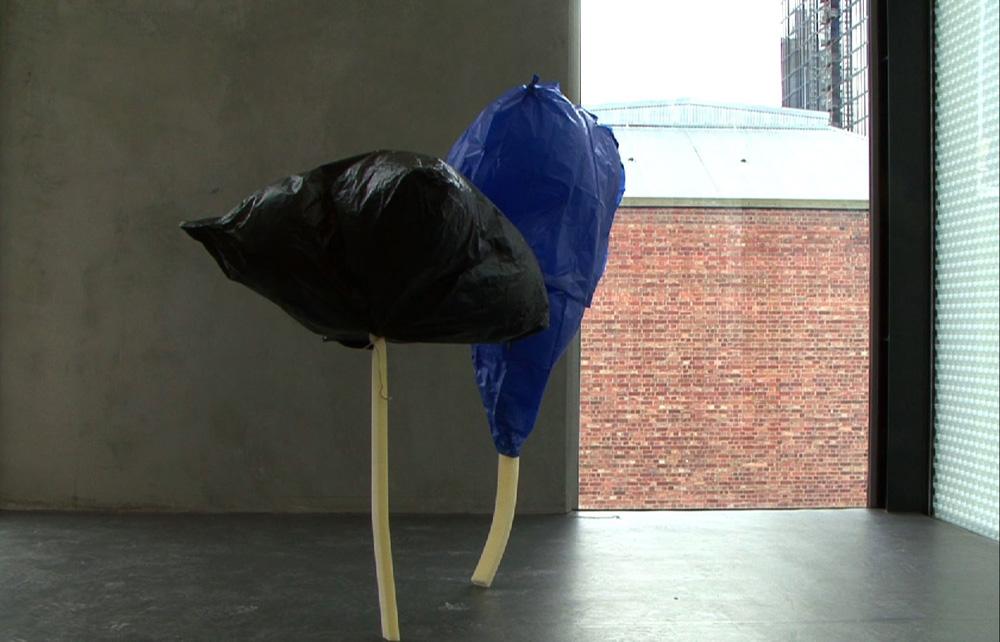 Boe-Lin Bastian, The Formal (still), 2010