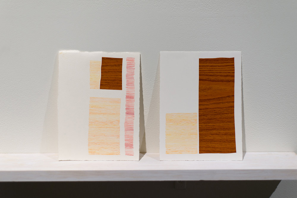 "Josephine Hellen Franklyn,  Notes and Reflections,  2017, Three Installed shelves, mixed media on paper, assembled objects (various materials), iPad, timber box, 10"" video, looped."