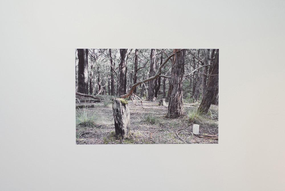 Cara Johnson,  Untitled , 2017, photographic print on cotton rag paper 530mm x 800mm
