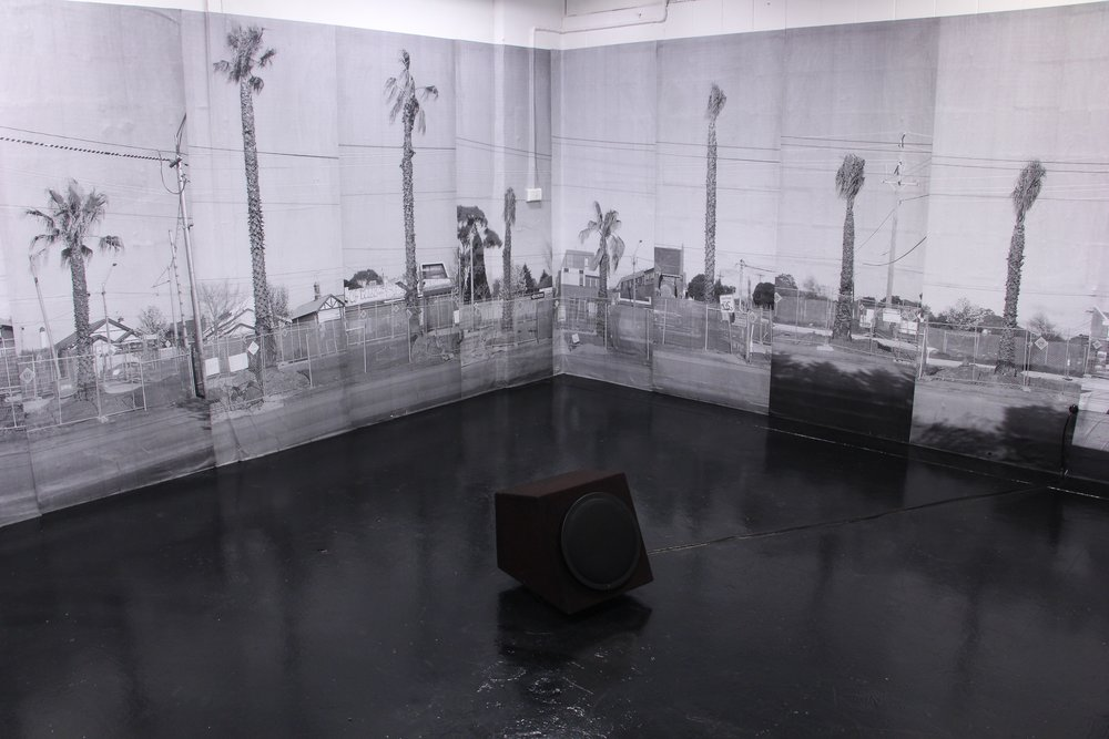 Aoife Coleman,  Not You Again,  2017, installation, dimensions variable