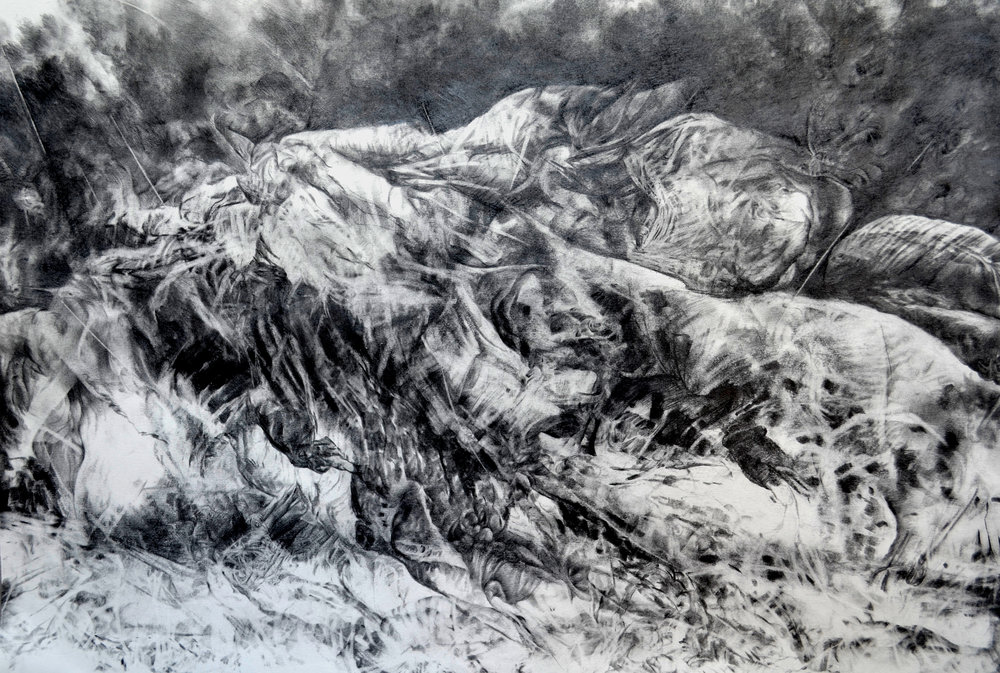 Bakhtyar Kaftan, Residue from mass grave, 2016, pencil on paper, 76 x 56cm