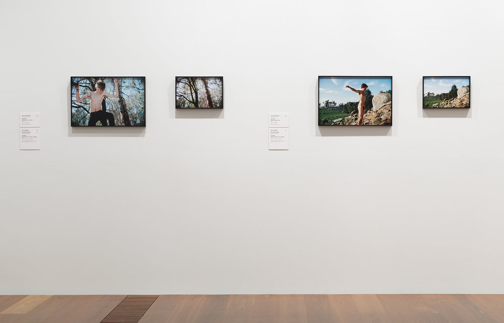 Drew Pettifer (with Chris Bond), installation view, Melbourne Now, National Gallery of Victoria, 2013-14, Image - Christian Cappuro