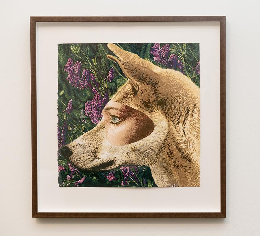 Jazmina Cininas   Wolfsbane works on dingoes too , 2004  Reduction linocut  50 x 49 cm