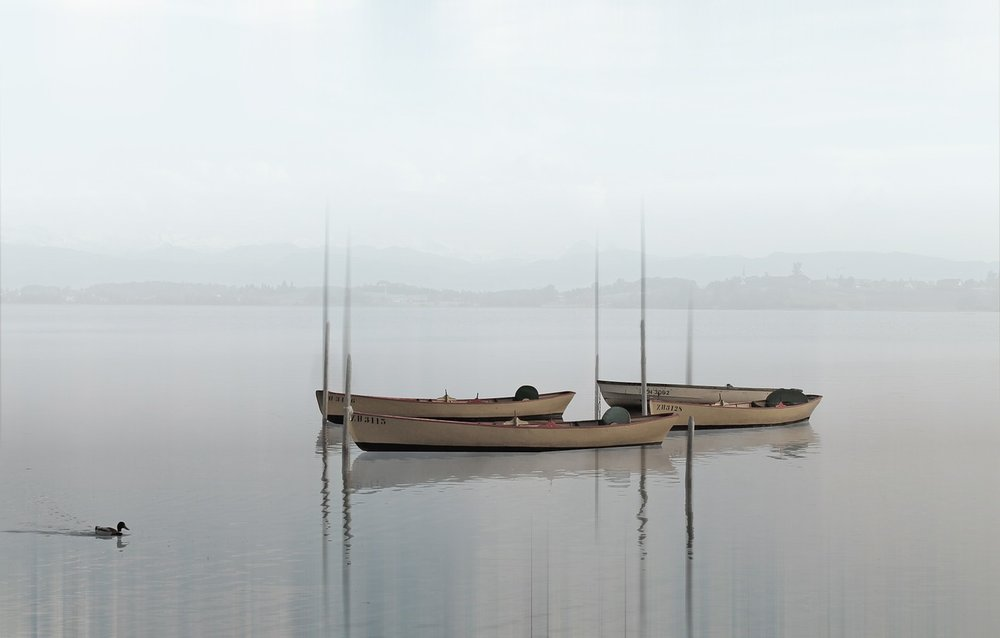 boats-564922_1280.jpg