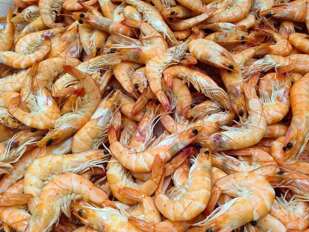 shrimp-727214_1280.jpg