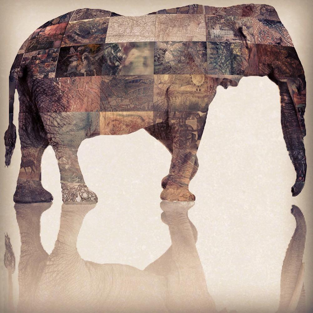 FB elephant.jpg