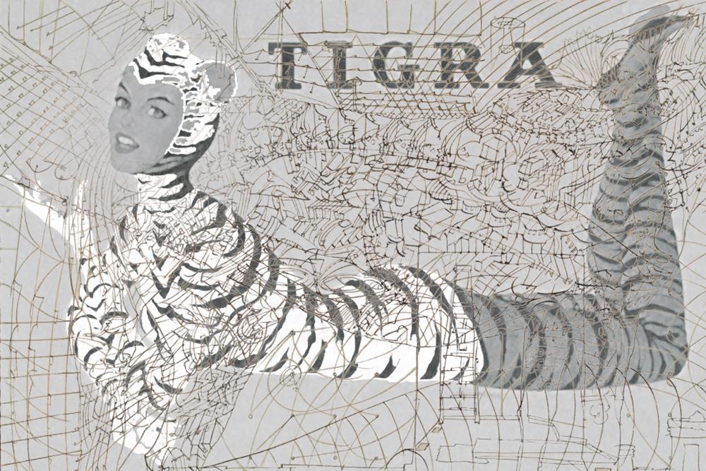 tigra.jpg