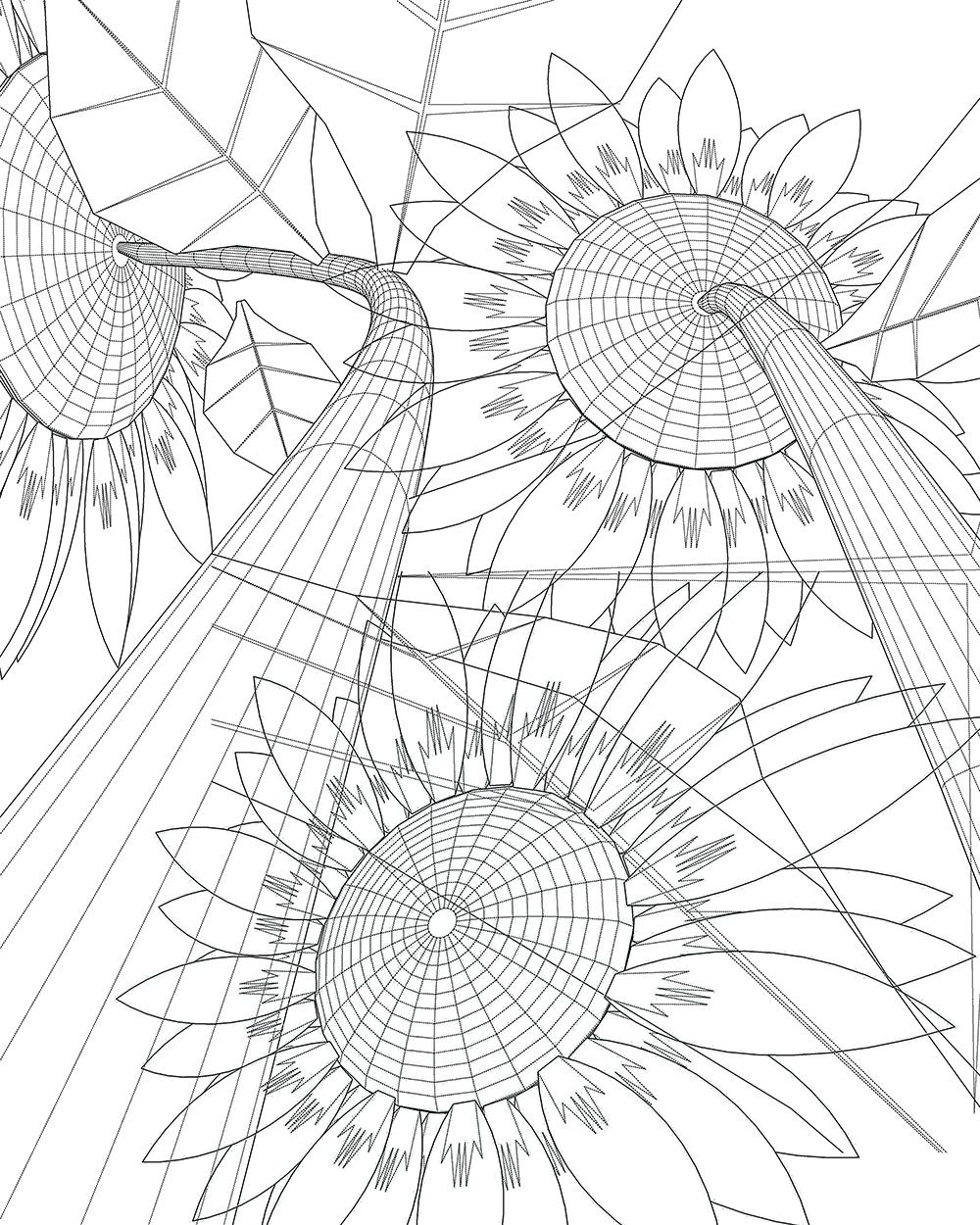 sunflower composite.jpg