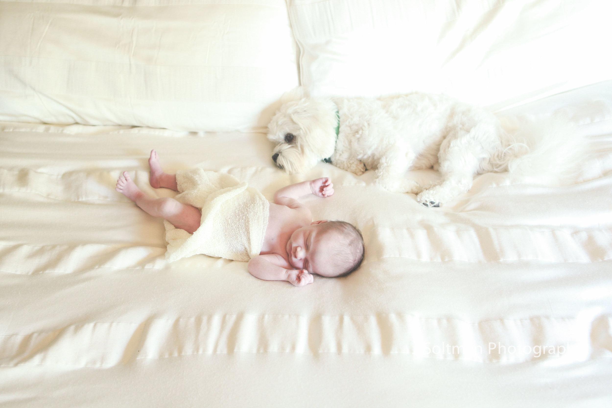 NewbornPhoto-8818