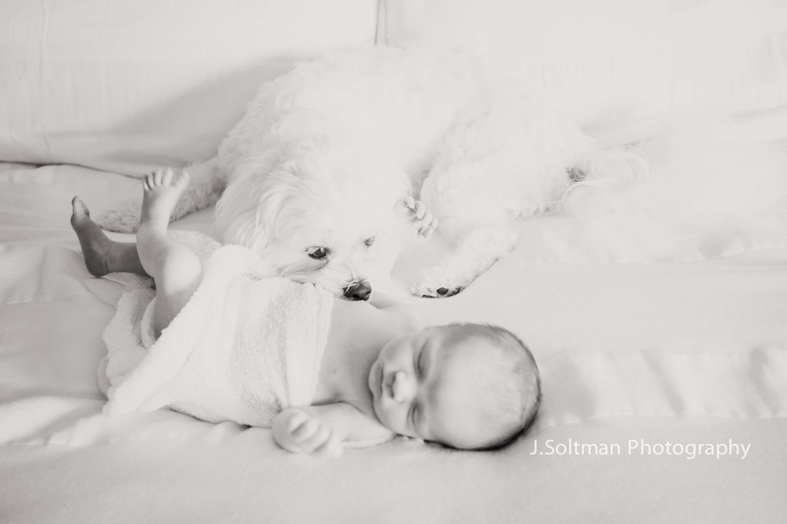 NewbornPhoto-8819