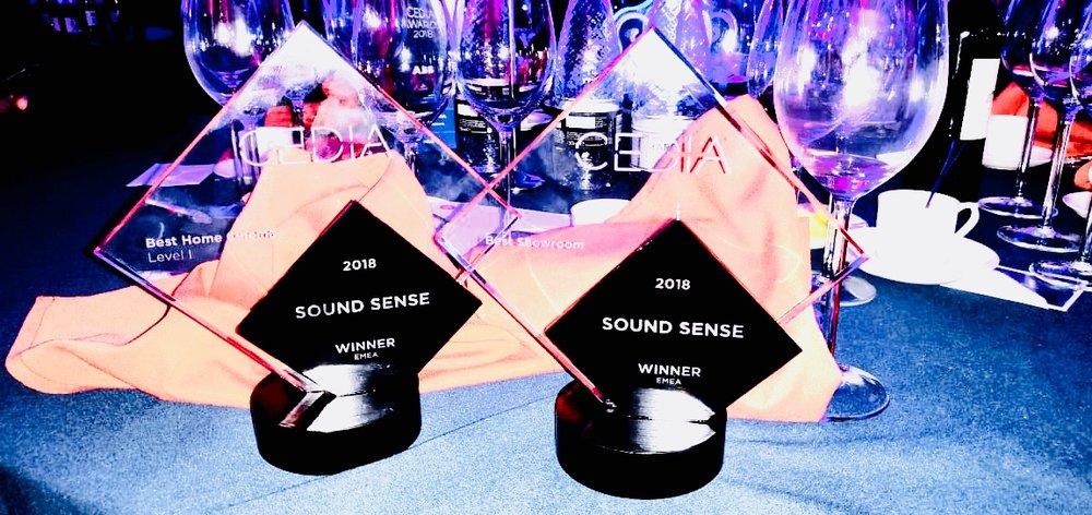 CEDIA-EMEA Awards.jpg