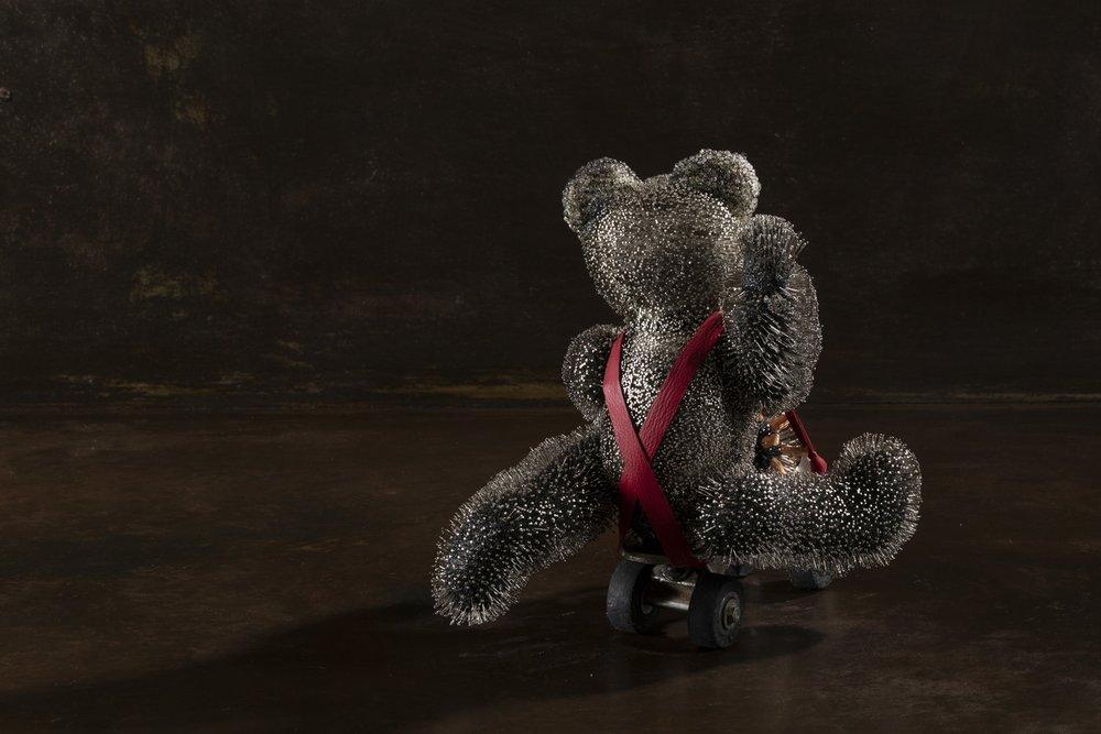 L'ours transgénique  Épingles