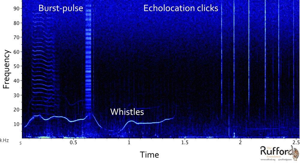 Spectrogram_Jet.jpg