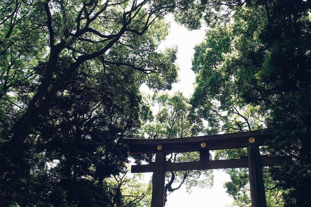160612-Tokyo1.jpg
