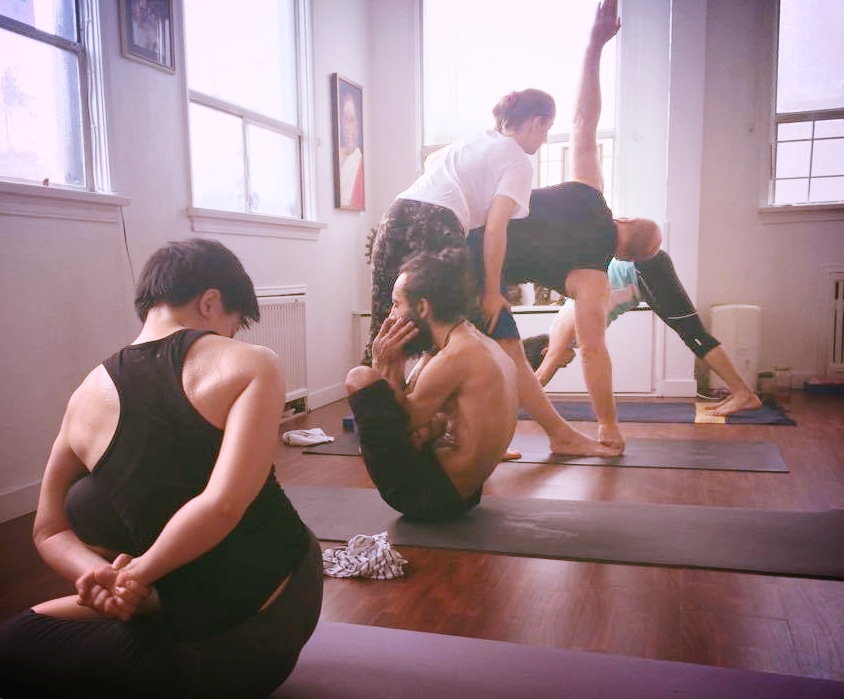 Fundamentals of ashtanga yoga & introductory workshops. learn more about the mysore practice.