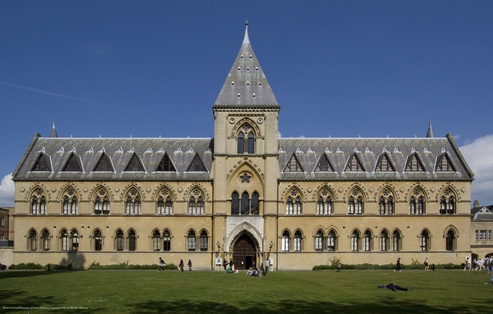 Oxford_University_Museum_of_Natural_History.jpg