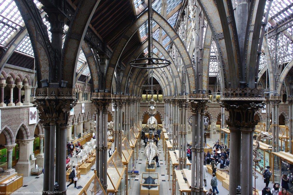 Oxford_University_Museum.jpg