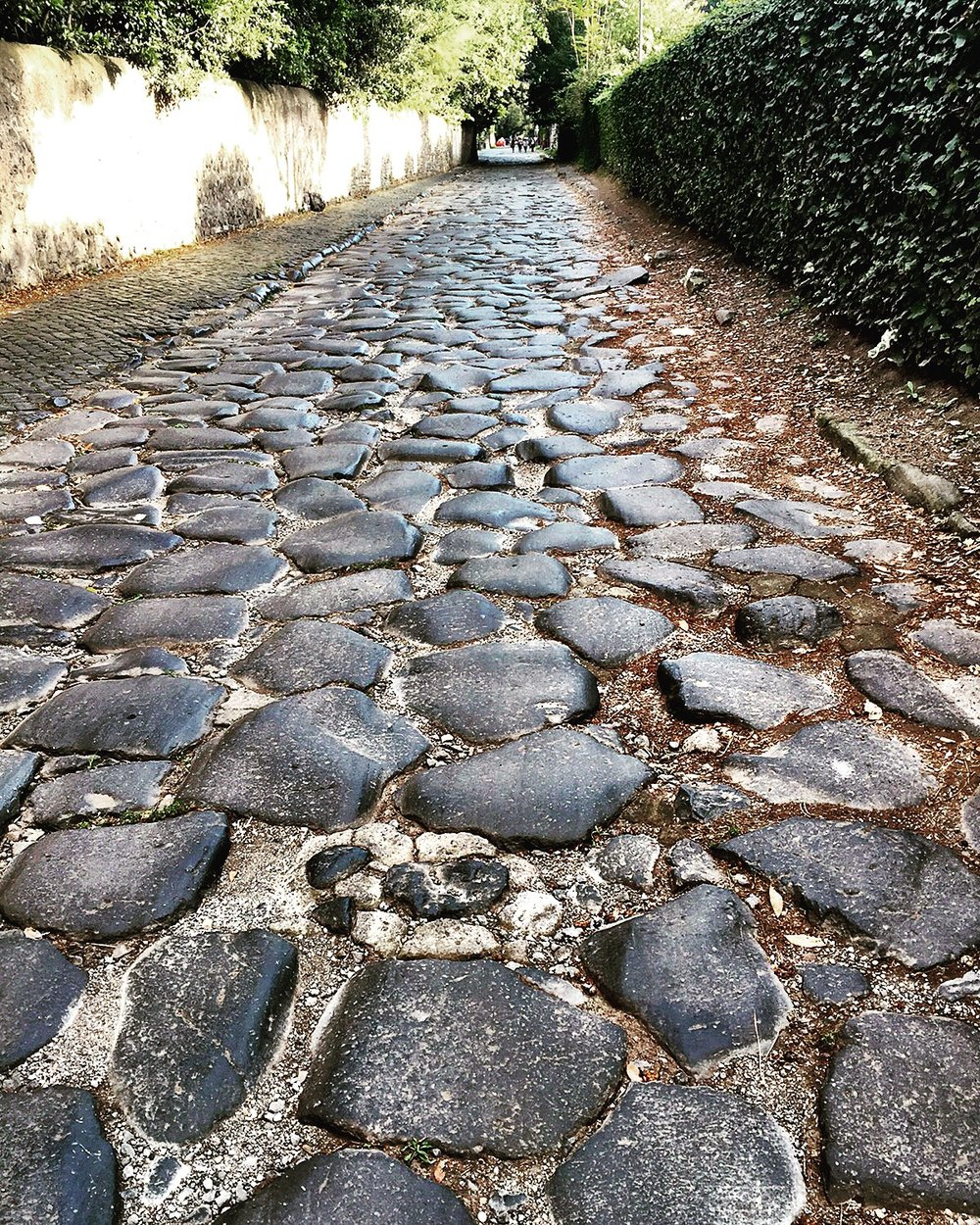 ROMAN COMMUTE, OR THE MARATHON  (A FAVORITE FROM THE BLOG)