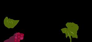 spiritual direction annette logo