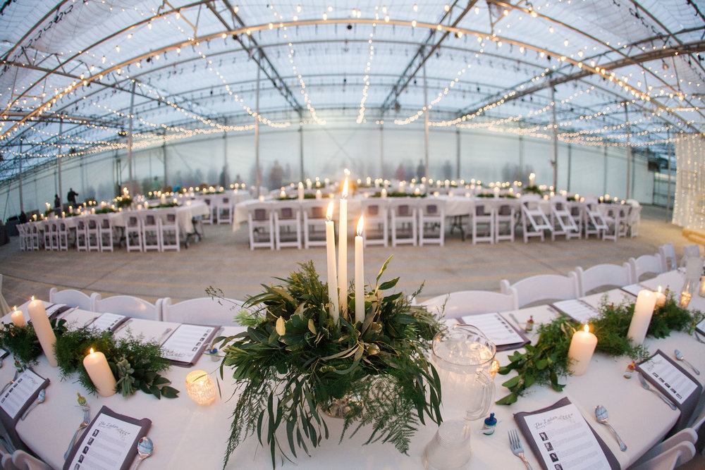 Wes & Cecily Wedding_456web.jpg