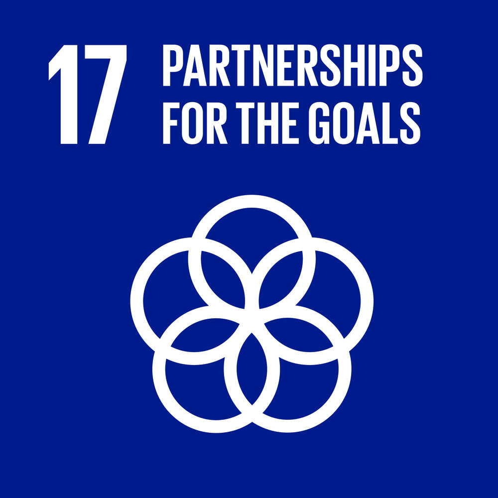 E_SDG goals_icons-individual-cmyk-17.jpg