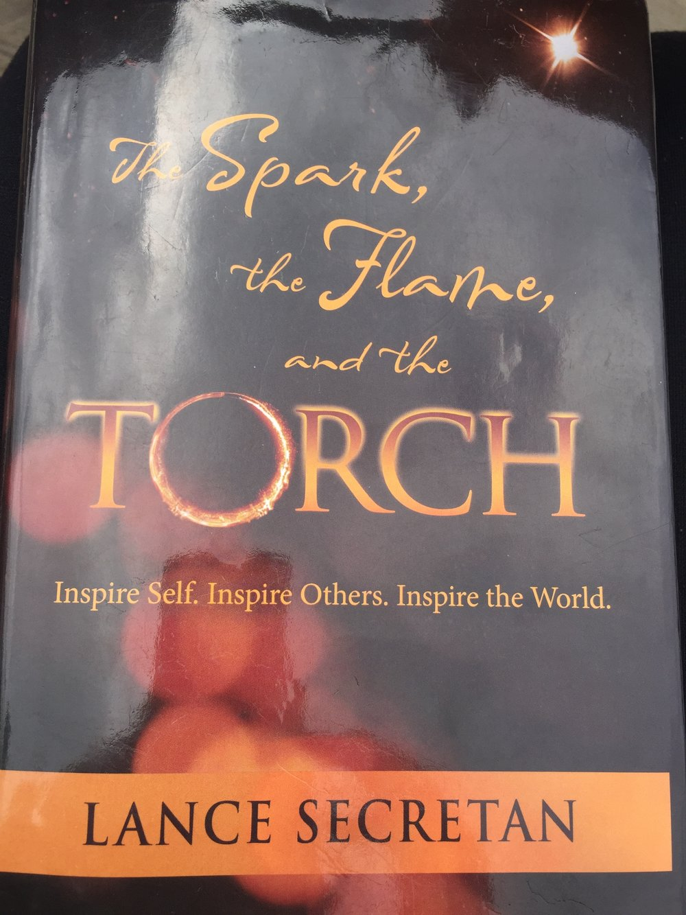 During a Barret conference in Canada I met this very inspiring man, Lance Secretan, who is also a great poet by the way. He sure walks his talk. In this book he elaborates on the importance of developing Self as the only way to (effortlessly) then be able to inspire others and automatically inspire the world. Very inspiring!