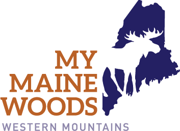 My Maine Woods