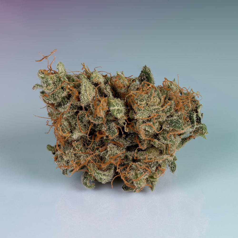 Sugarpunch dried nugget loaded with trichomes