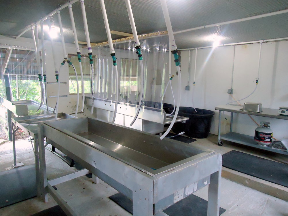 Healthy Hen Farms' facility for processing their pasture raised chicken.