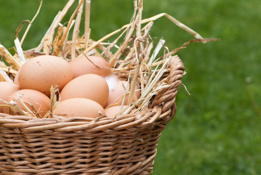 Pastured eggs from chickens fed certified organic, non-GMO, soy-free feed.