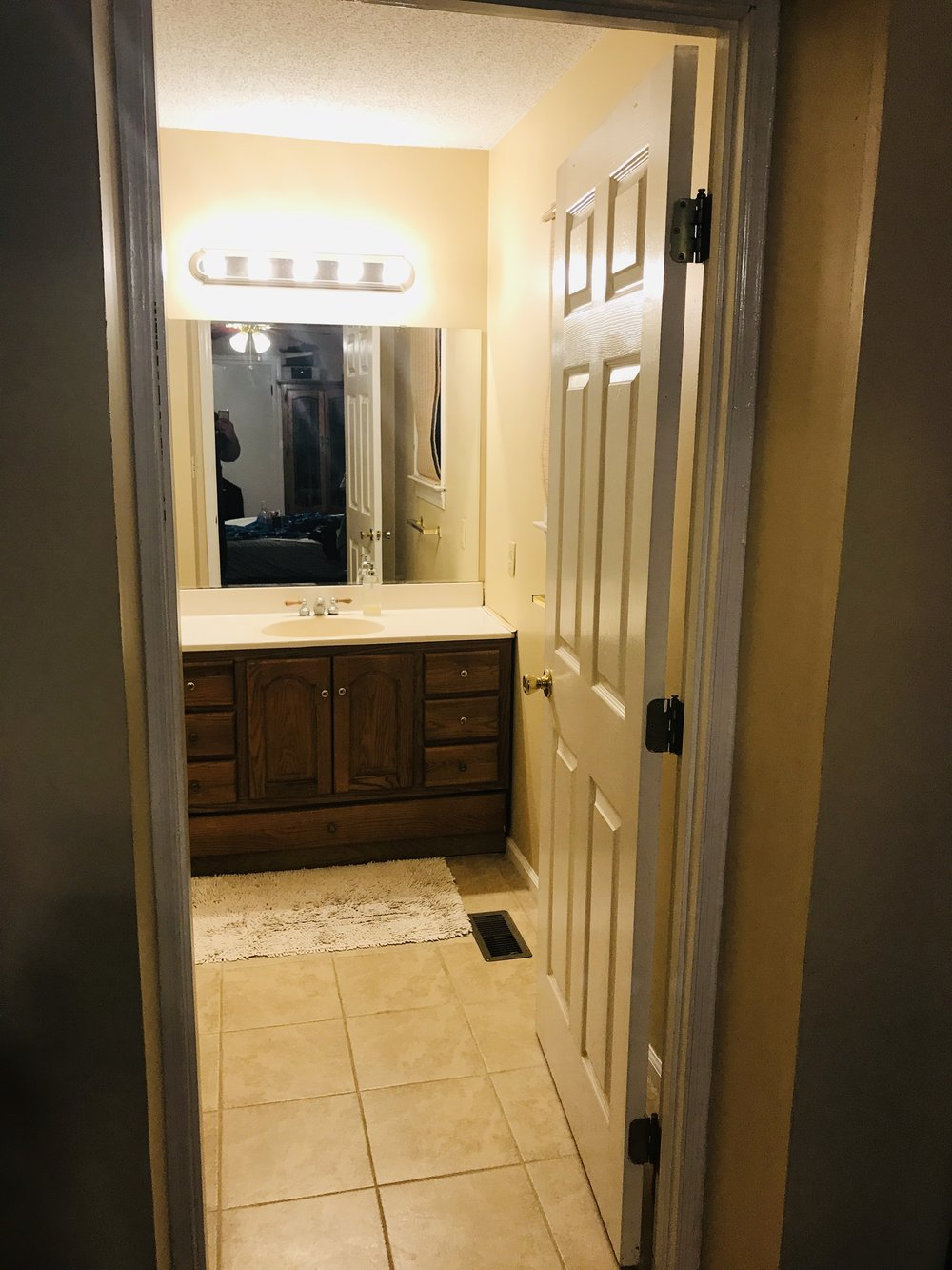 This is the master bath. We were planning to update this similar to how we did the hall bath.