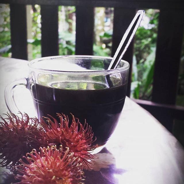 Coffee and fresh rambutans right off the tree.  #borneo