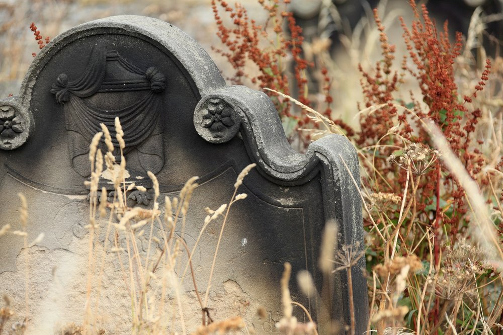 DEATH AND BEAUTY's BREATH PART III: PoE'S JOURNEY TO THE GRAVE - Edgar Allan Poe's life was much tormented, and his last days on earth were no different. Can you unravel the mystery of his mysterious death?