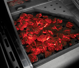Charcoal Tray - Napoleon Grills for sale at Chim Chimney Fireplace Pool & Spa Wenatchee