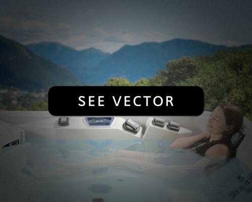 Marquis Vector - Chim Chimney Wenatchee.jpg