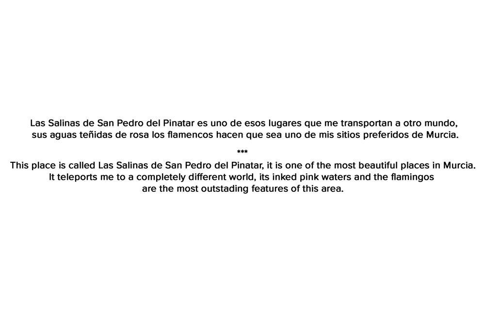 SALINAS.jpg