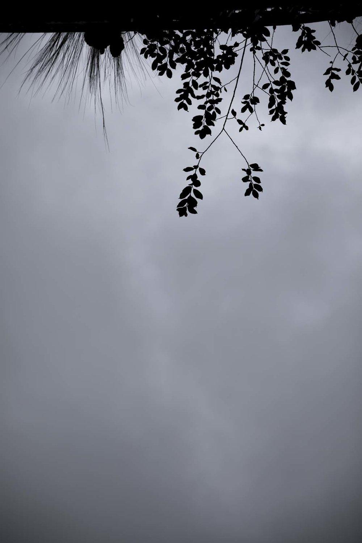 SKY_COLMAR.jpg