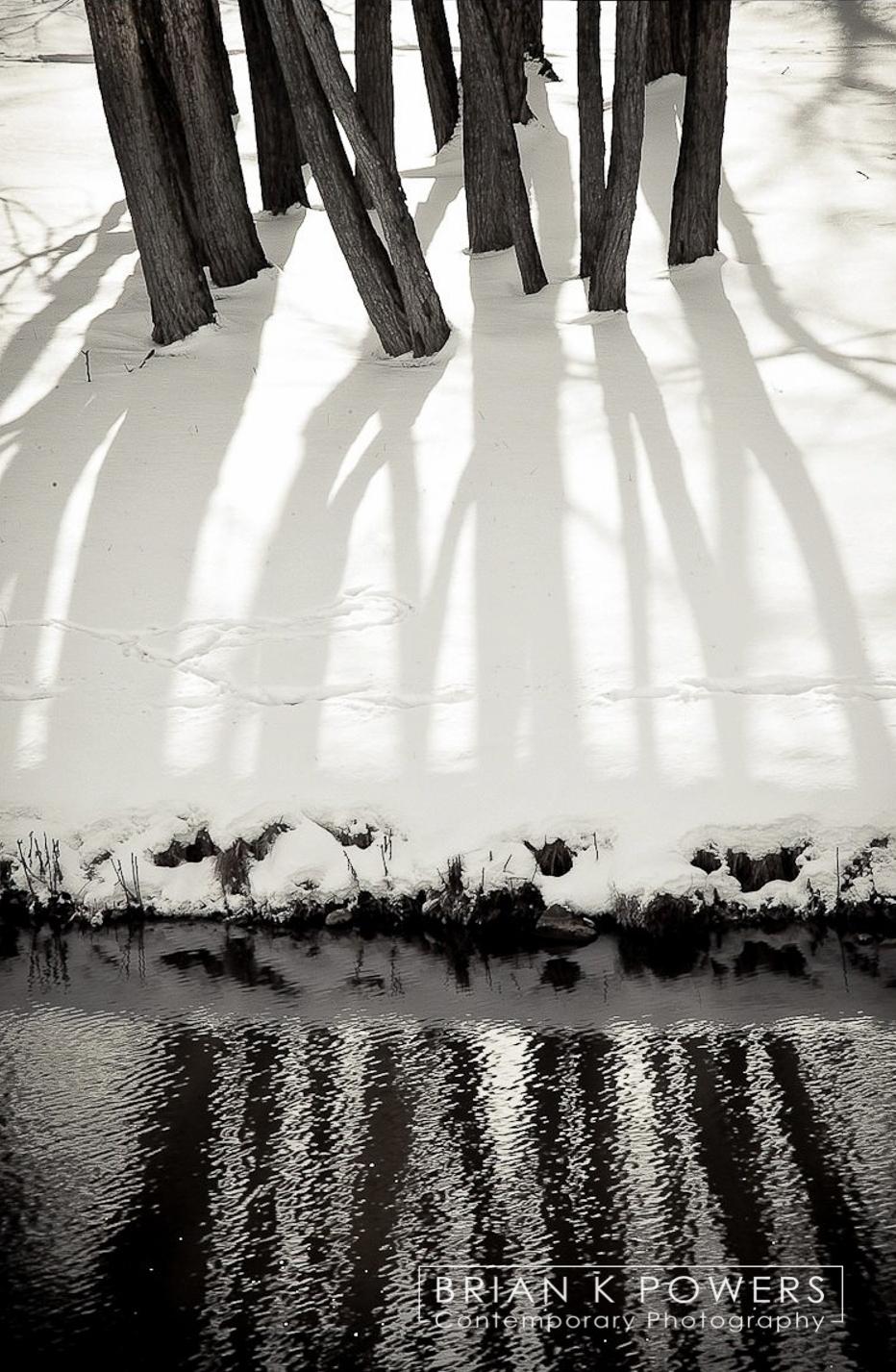 Ann_Arbor_Michigan_winter_trees_001