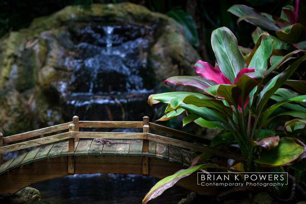 Brian_K_Powers_Photography_Travel _ Places_939.jpg
