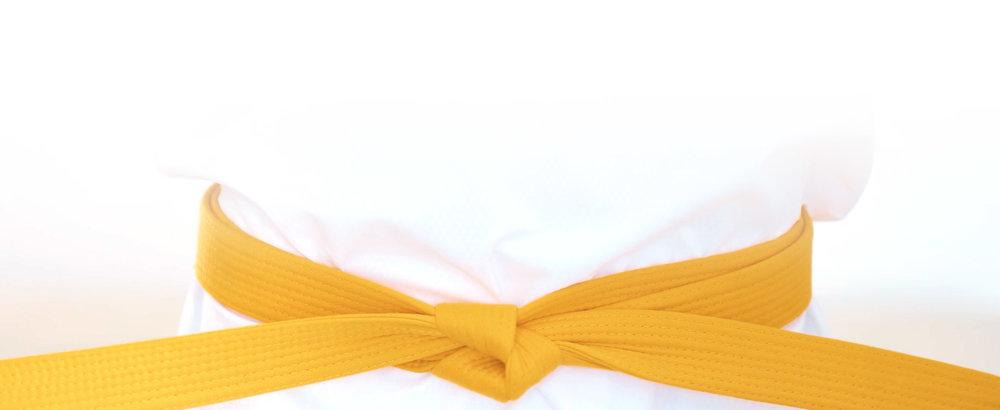 yellow belt online taekwondo kukkiwon curriculum